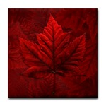 Canada Souvenir Coasters Canadian Maple Leaf Souvenir Coasters for Home & Office Beautiful Red Canada Maple Leaf Souvenir  						Gifts