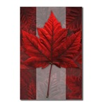 Canada postcards, Canadian Maple Leaf souvenir postcards Art Postcards 8 Pack Maple Leaf