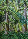 Old growth forest Landscape painting, Canadian landscape painting, Original landscape moss covered trees painting west coast old growth forest arcylic painting on watercolour paper Original paintings for sale by contemporary Canadian Artist Kim Hunter / INDIGO