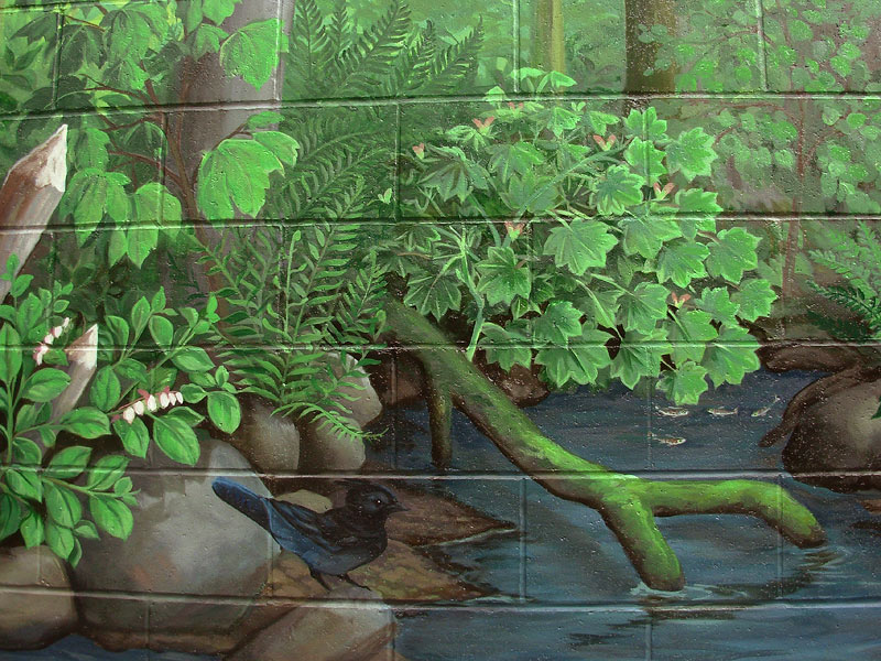 Wildlife Canadian Landscape Painting Mural Artist Vancovuer BC Hyde Creek  Mural Artist Kim Hunter Part 74