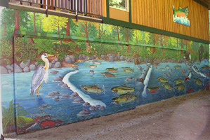 Wildlife Mural Hyde Creek Wall Mural Port Coquitlam BC Landscape / Wildlife Mural Painting by Vancouver Artist Muralist Kim Hunter