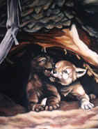 wildlife painting wolf cubs in a cedar den playing oil painting click on Image for detail