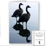 Canada Goose Souvenirs Shirts Gifts Canada Goose Cards & Decor Shop