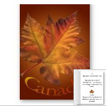 New Personalized Canada Maple Leaf Greeting Cards