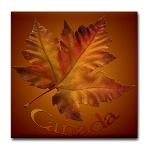 Canada Souvenir Coasters 2 New Maple Leaf Coasters Added