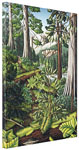 Old Growth Forest Canadian Landscape Painting Prints on Canvas