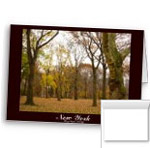 Blank Central Park New York Cards Personalized Central Park Card Invitations
