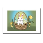 Easter Bunny Cards Gifts PostcardsPack of 8 Easter Bunny Postcards & GIfts Adorable Easter Bunny art & design by Canadian Artist Kim Hunter. Easter Bunny with basket, Tulips & Easter Eggs Gifts Design for Gifts & T-shirts for Home & Office, Men,
