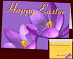 Easter Cards Flowers Cards Personalized Crocus Cards