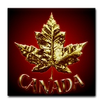 Gold Canada Coasters 2 New Metal Canada Coasters Added