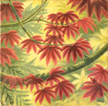 Autumn Vine Maple Landscape Painting w Hummingbirds Canadian landscape paintings by Artist / Designer Kim Hunter/ INDIGO