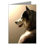 Husky Cards Siberian Husky Greeting Cards & Sled Dog Gifts