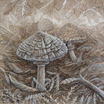 Parasol Mushroom Painting shaggy mane mushroom ink & white pencil on canvas 9