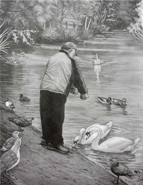 Feeding birds swans in the park pencil sketches drawings illustration ink drawings original art