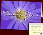 Blue Flowers Thank You Cards Personalized Cards