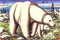 Churchill painting Polar Bear with Cub on the Summer Tundra Painting Churchill Manitoba Original Painting Click on Image for Detail