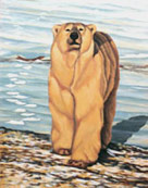 Polar Bear Painting Churchill MB bear painting by Canadian Artist Kim Hunter / Indigo