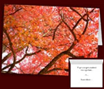 Personalized Greeting Cards Inspirational Autumn Cards Custom or Blank