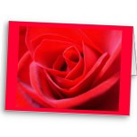 Personalized Rose Cards Blank Customized Invitations