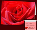 Red Rose Cards Personalized Romantic Rose Cards