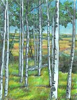 Aspen / Birch Tree Pencil Sketch in the Alberta Foothills Pencil Drawing by Canadian Artist Kim Hunter / INDIGO. Custom Art & Illustration Available!