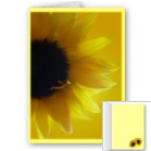 Flower Cards Personalized Message Sunflower Cards