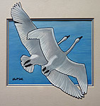 painting Trumpeter Swans in Flight Original Painting Click on Image for Detail