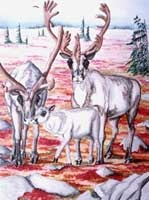 wildlife painting tundra CARIBOO painting Caribou on the Autumn Tundra Painting Churchill MB Original Painting Click on Image for Detail