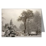 Winter Landscape Photo Greeting Cards Prints & Gifts Shop Online. Winter Wonderland Beautiful Snow Landscape Photo Greetingcards & Gifts