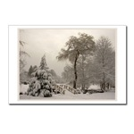 Winter Wonderland Postards Snowy Landscape Photo Cards Cards Winter Bridge Landscape Cards & Gifts for Men Women & Kids Beautiful Winter Landscape Gifts E-mail to customize