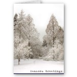 Seasons Greetings Cards Blank Winter Wonderland Christmas Cards
